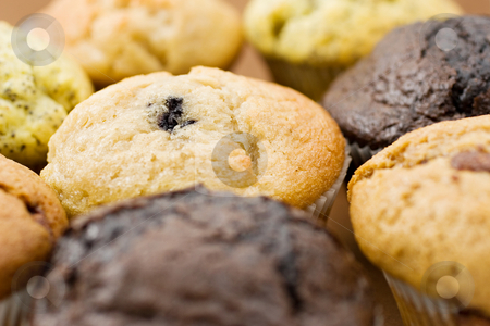 Food #10 stock photo, A Plate of muffins - Blueberry muffin in focus - Shallow Depth of Field by Sean Nel