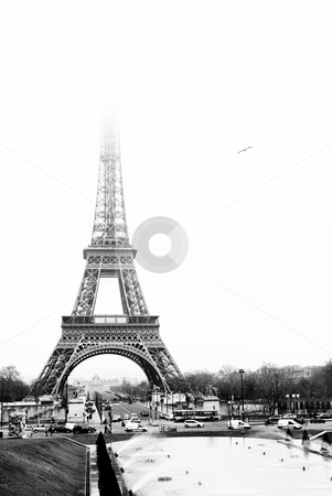 Paris #33 stock photo, The Eiffel Tower in Paris, France. Black and white. Copy space. by Sean Nel