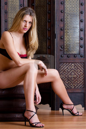 Lingerie #31 stock photo, Beatiful blonde woman sitting on leather pillows wearing black and red lingerie by Sean Nel