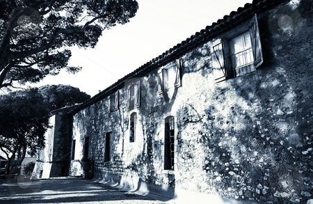 Building in Cannes stock photo, Old building with trees infront in Cannes, France. Black and white by Sean Nel