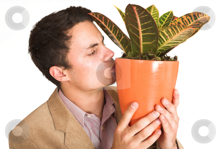 Businessman #129 stock photo, Businessman kissing a pot plant. by Sean Nel
