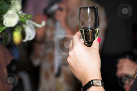 Wedding #44 stock photo, Close-up of a hand making a toast.  Shallow D.O.F by Sean Nel