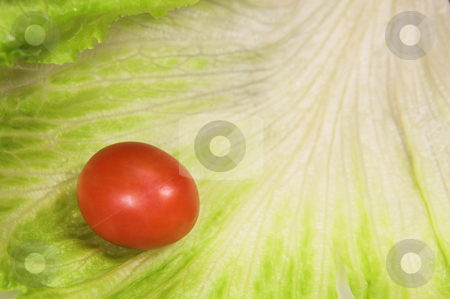 Food #34 stock photo, Cherry tomato on a leaf of lettuce. by Sean Nel