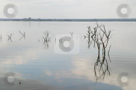 Dam stock photo, Filled up lake by Sean Nel