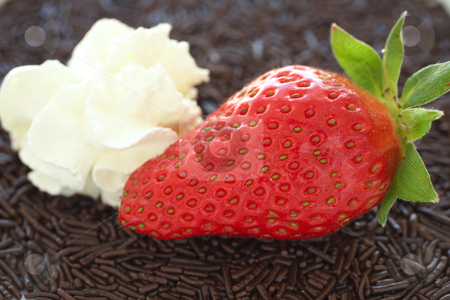 Strawberries and chocolate stock photo, Fresh ripe strawberry with small chocolate sprinkles served as a dessert with a side topping of cream by Sean Nel