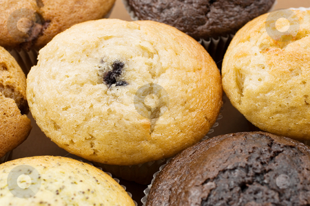 Food #5 stock photo, A Plate of muffins - Blueberry muffin in focus by Sean Nel