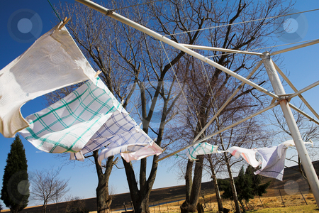 Washing #3 stock photo, Tea towels on the washing line, blowing in the wind  by Sean Nel