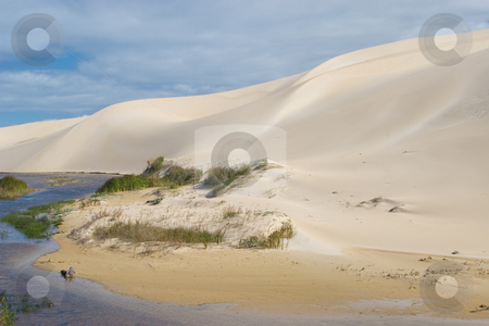Dunes #5 stock photo, River next to the sand dunes by Sean Nel