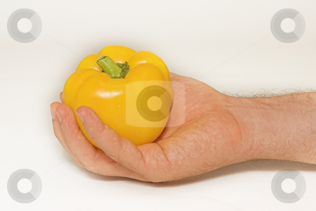 Peppers #5 stock photo, Yellow Pepper in hand by Sean Nel