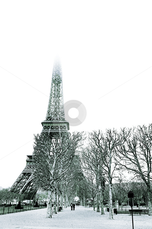 Paris #29 stock photo, The Eiffel Tower in Paris, France. blue tone. Copy space. by Sean Nel