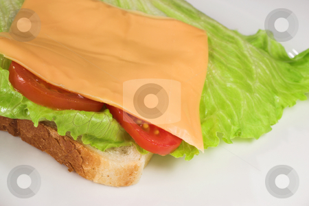 Food #24 stock photo, A cheese, tomato and lettuce sandwich on a white plate by Sean Nel