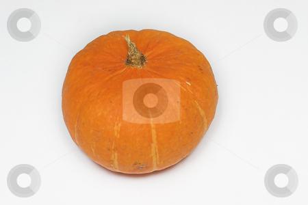 Pumpkin #1 stock photo, Orange Pumpkin by Sean Nel