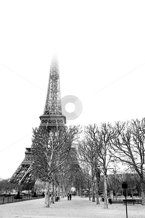 Paris #28 stock photo, The Eiffel Tower in Paris, France. Black and white. Copy space. by Sean Nel