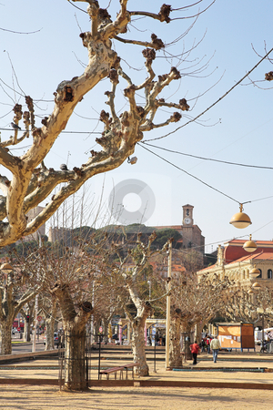 Street in Cannes stock photo, Street with dry trees and buildings in Cannes, France. by Sean Nel