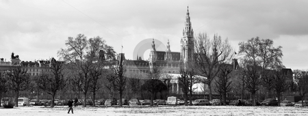 Viennese Landmarks stock photo, The Town Hall (Wien Rathaus) buildings in Vienna, Austria across a snow covered park. Cloudy day at the end of winter. Black and white panoramic image by Sean Nel