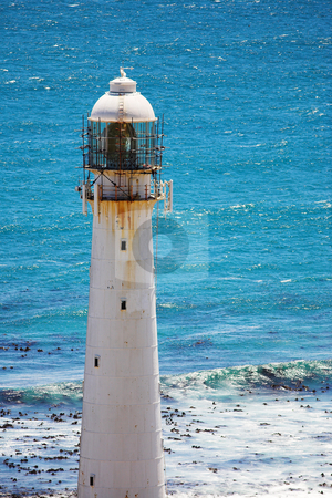 Lighthouse #3 stock photo, The Slangkop Lighthouse at Kommetjie, Western Cape. The Tallest Lighthouse in South Africa by Sean Nel