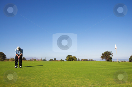 Golfer #48 stock photo, A golfer playing golf on a green by Sean Nel