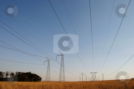Powercables #2 stock photo, Powerlines running through a national park by Sean Nel