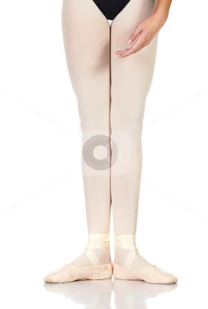 Ballet Steps stock photo, Young caucasian ballerina girl on white background and reflective white floor showing various ballet steps and positions. First Position. Not Isolated. by Sean Nel