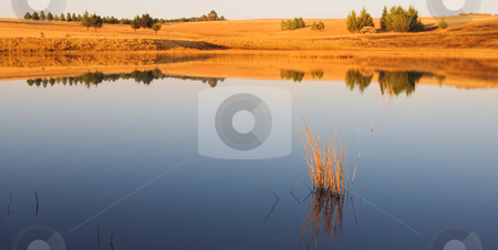 Flyfish #34 stock photo, Landscape of a fly fishing lake.  Shallow D.O.F by Sean Nel
