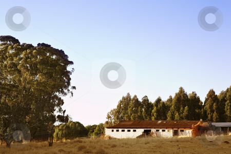 Flyfish #44 stock photo, A farm stall surrounded with large trees by Sean Nel