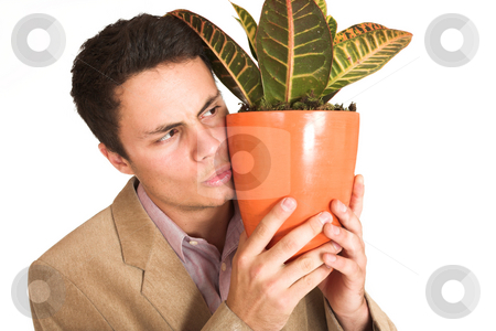 Businessman #130 stock photo, Businessman holding  a pot plant by Sean Nel