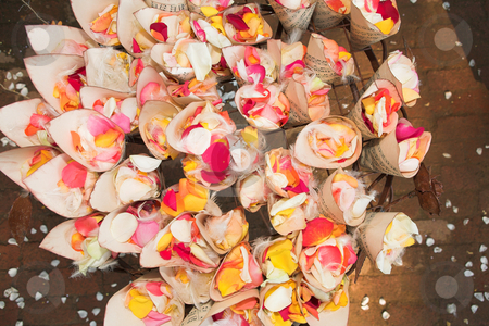 Rose petal confetti stock photo, A flower and feather arrangement with red, pink and yellow rose petals inside small folded music sheets at a wedding reception by Sean Nel