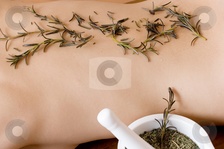 Massage #11 stock photo, Lavender twigs on clean naked back by Sean Nel