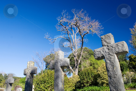 Graves #7 stock photo, Old stone Grave in the shape of a cross at the Belvedere Church, Knysna, South Africa by Sean Nel