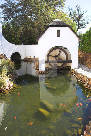 Old refurbished waterwheel and watermill stock photo, Old watermill next to winery on Plaisir de Merle, South Africa, on a sunny summers day. White and Orange Koi fish swimming in the pond by Sean Nel