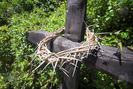Crown of Thorns stock photo, Crown of thorns on a wooden cross. Easter celebrations for Christian religion by Sean Nel