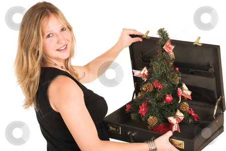 Business Woman #508 stock photo, Pregnant Business Woman, wearing black top, holding briefcase with Christamas Tree inside. by Sean Nel