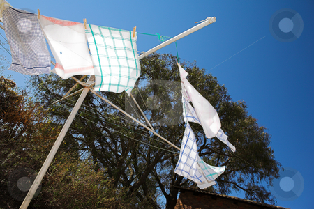 Washing #4 stock photo, Tea towels on the washing line, blowing in the wind  by Sean Nel