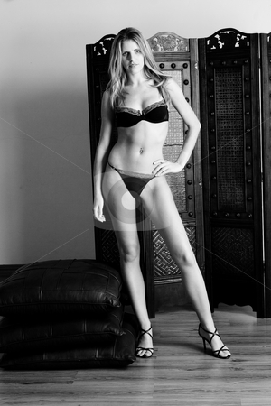 Lingerie #35 stock photo, Beatiful blonde woman standing, wearing black and red lingerie - High Key BW by Sean Nel