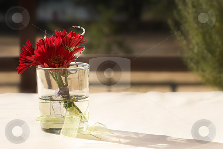 Flowers #2 stock photo, Red Flowers on a table by Sean Nel