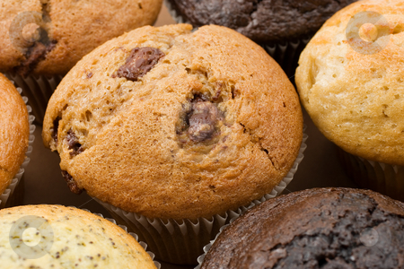 Food #6 stock photo, A Plate of muffins - Caramel muffin in focus by Sean Nel