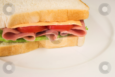 Food #33 stock photo, A salami, cheese, tomato and lettuce sandwich on a white plate. by Sean Nel