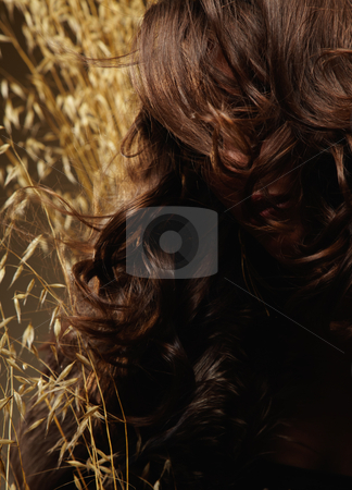 Woman Surrounded by Wheat stock photo, Young woman surrounded by wheat. Her face is partially obstructed by her hair. Vertically framed shot. by Media Deva