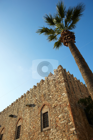 Traditional Turkish building stock photo, Large traditionally styled turkish building with a tall palm tree against a clear blue sky on a sunny day by Sean Nel