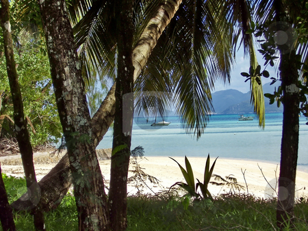 Beach on Seychelles stock photo, Beach on Seychelles by Sergey Gorodenskiy