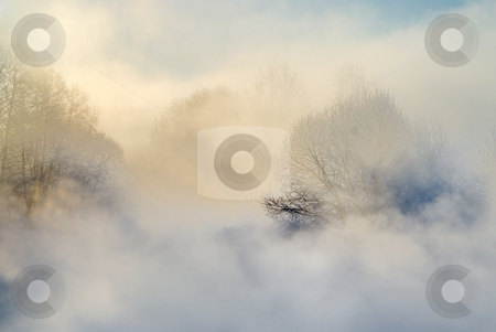 Frosty morning stock photo, Early morning, strong cold, frosty a smoke. by Vladimir Blinov