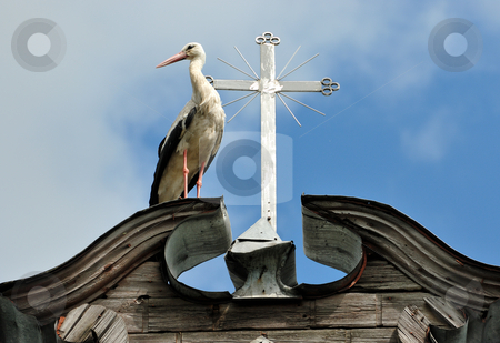 Stork and a cross stock photo, The stork costs near to a cross on a roof of a rural church by Vladimir Blinov