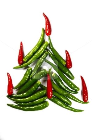 Chili New Year Tree stock photo, Spicy chili New Year Tree isolated on white by Oleg Blazhyievskyi