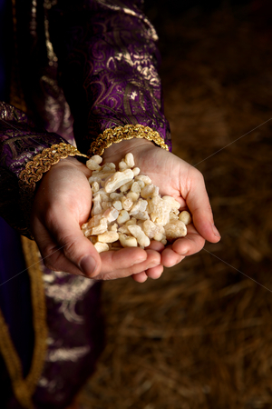 Hands holding Frankincense stock photo, Palms together holding a handful of pure aromatic frankincense. by Leah-Anne Thompson