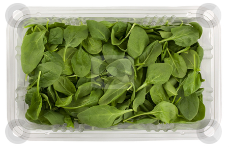 Green baby spinach in a clear box stock photo, Fresh green baby spinach in a clear plastic grocery box isolated on white with clipping path by Marek Uliasz