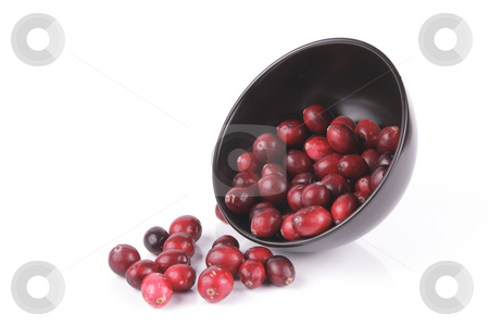 Cranberries spilling out of a Black Bowl stock photo, Red ripe cranberries spilling out of a small round black bowl on its side with a reflective white background by Keith Wilson