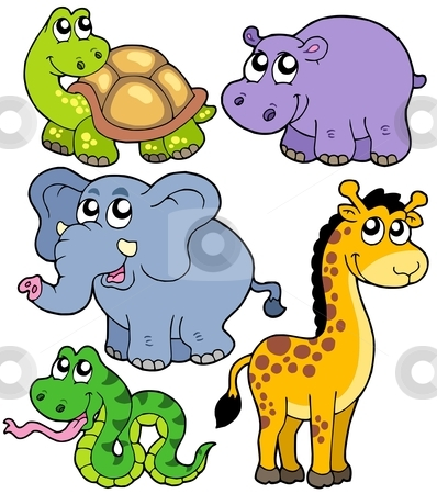 African animals collection 4 stock vector clipart, African animals collection 4 - vector illustration. by Klara Viskova