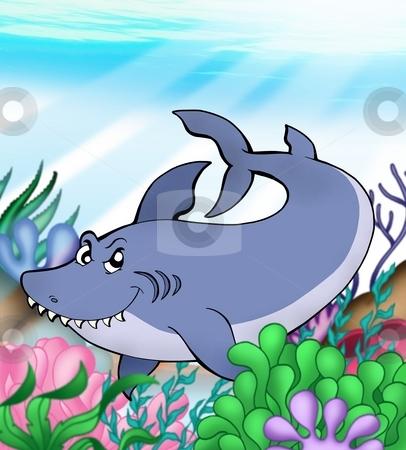 Big blue shark underwater stock photo, Big blue shark underwater - color illustration. by Klara Viskova