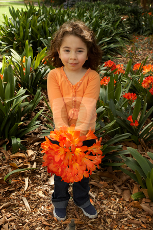Girll with a bunch of clivia from the garden stock photo, Little girl with a bunch of clivia miniata (bush lilies) from the garden by Leah-Anne Thompson