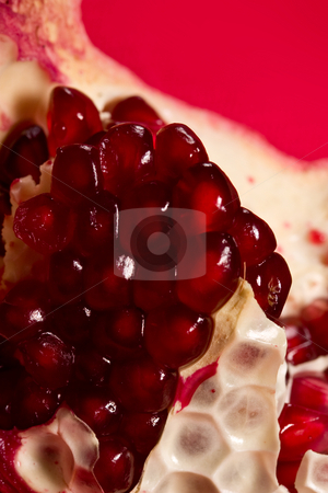 Pomegranate stock photo, Fruit series: ripe pomegranate on the red background by Gennady Kravetsky